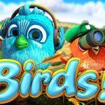 Birds Video Slot Game