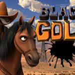 Black Gold Video Slot Game