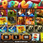 Puppy Love Video Slot Game